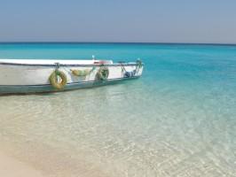 Barca Marea Rosie
